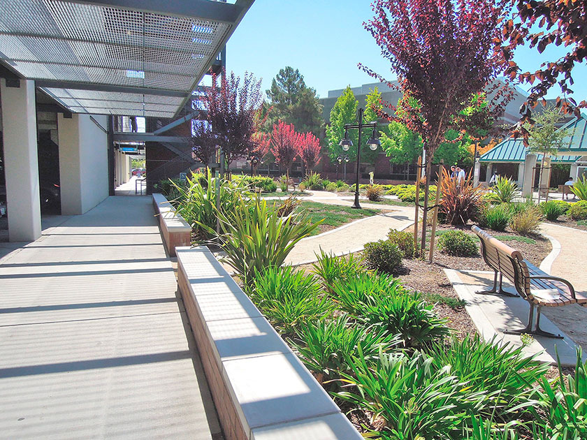 Pollock Landscape Architects | Kaiser Medical Center Parking ...